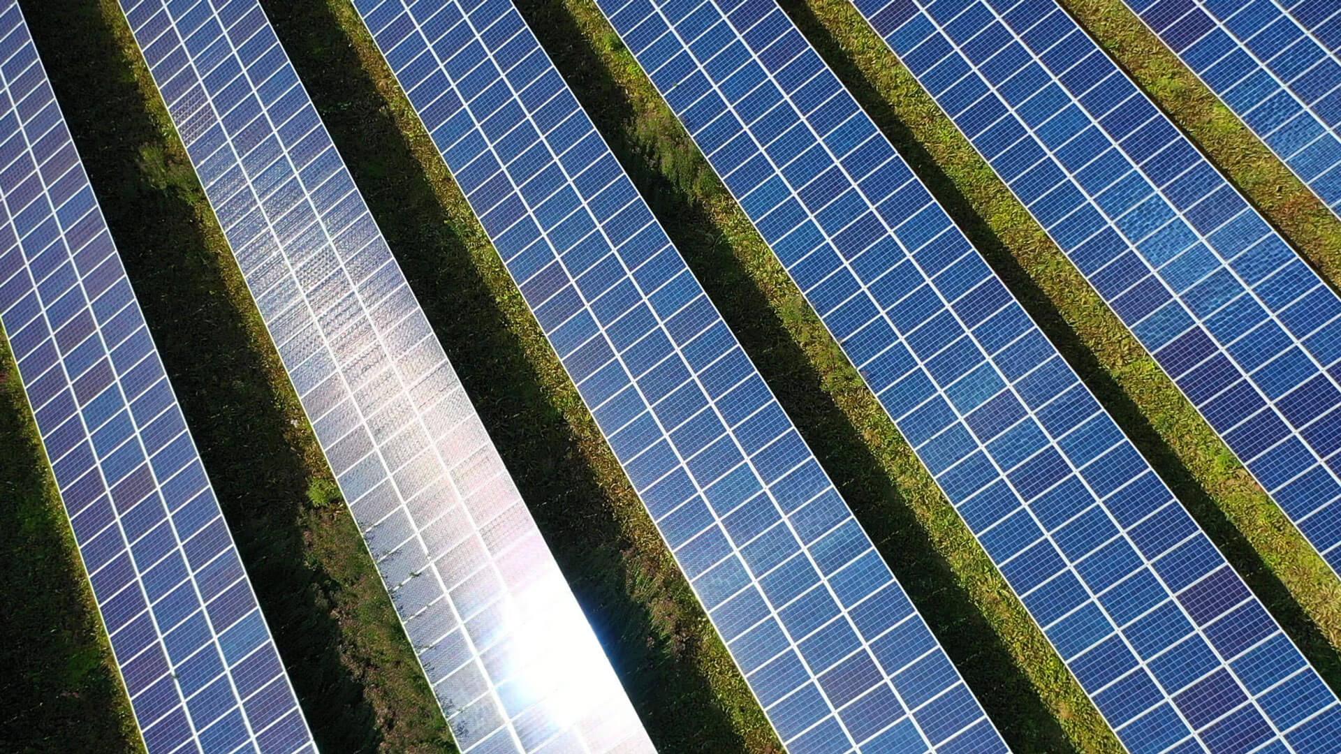 Die Photovoltaik-Branche floriert